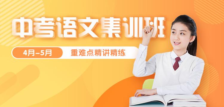 中考语文集训